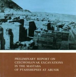 _Preliminary-report